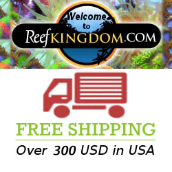 coral frag free shipping